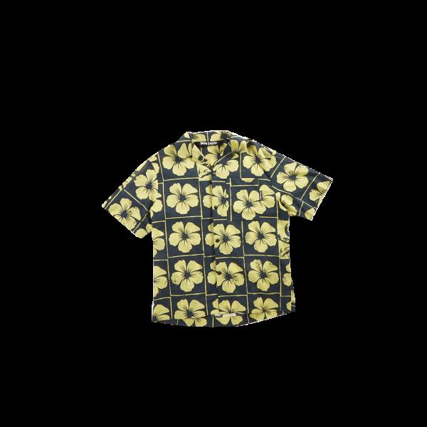 palmangelsSWL0126